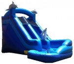 Mega Blue Dolphin Water Slide 2