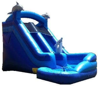 Mega Blue Dolphin Water Slide